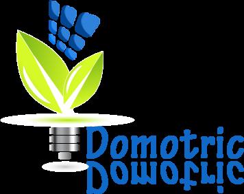 Domotric logo